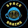Space Brains Helmet Logo